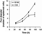 Rate of cell-cell movement of TEV-GUS in inoculated leaves of B149 and C24.Leaves from plants inoculated with TEV-GUS were harvested at time points indicated and infiltrated with the colorimetric substrate X-gluc. Foci diameter were measured microscopically at time points indicated and represented as mean (±SD). Data at 24 h represent mean of 17 foci, other points represent mean of 39 foci.