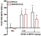 Rewarding effects of methamphetamine (METH) in Wistar and SHR/NCrlCrlj. (A) Place preference data (mean ± SEM) expressed as the difference in the amount of time spent in the METH-paired compartment during the post- and preconditioning days. Data are expressed as mean ± SEM. *p < 0.05, **p < 0.01 when comparing saline (SAL) vs METH-conditioned animals (n = 8).