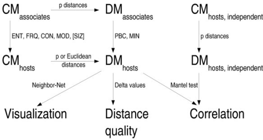 Overview of the distance methods and the tests applied. The picture describes the pure-distance framework developed in the course of the present study for testing methods of deriving host character data and/or distance matrices from associate character data. The location of the methods for character-character transformation (ENT, FRQ, CON, MOD) and for distance-distance (MIN, PBC) transformation is indicated. Integrating the SIZ distances (that are biologically meaningless in the case of cloned sequences) allows us to test for a potential sampling size bias. Abbreviations: CM, character matrix; DM, distance matrix. See the methods section for the abbreviations for the transformation methods.
