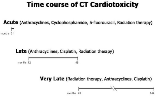 Schematic view of the time course of CT-related cardiotoxicity. CT = cancer therapy.