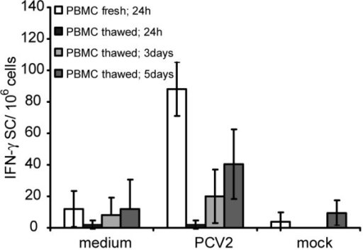 "Comparison of the PCV2 re-stimulation profile for freshly isolated compared to frozen and then in vitro expanded PBMC. PBMC were re-stimulated with PCV2, mock antigen, or medium alone directly after isolation (""PBMC fresh; 24 h""). Aliquots of the PBMC were frozen under liquid nitrogen, before thawing and expanding by culture in the presence of rpoIL-2 together with PCV2, mock antigen, or medium alone. This expansion was for 24 h (""PBMC thawed; 24 h""), 3 days (""PBMC thawed; 3 days"") or 5 days (""PBMC thawed; 5 days"") prior to analysis for IFN-γ SC by the ELISPOT assay. Means of triplicates +/- SD of two experiments are shown."