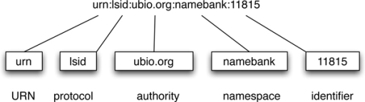 "LSID. A LSID is prefixed with ""urn:lsid"", then follows the authority, namespace, and identifier components."