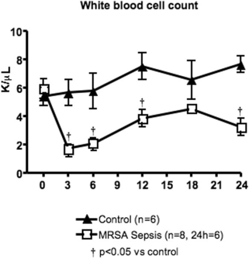 White blood cell count in control and methicillin-resistant Staphylococcus aureus (MRSA) sepsis groups. Data are expressed as mean ± standard error of the mean. � p < 0.05 versus control.