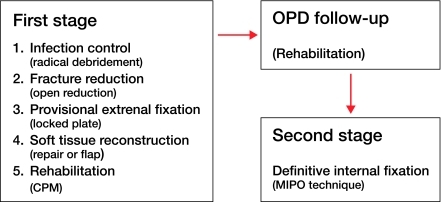 Flow diagram of treatment protocol.