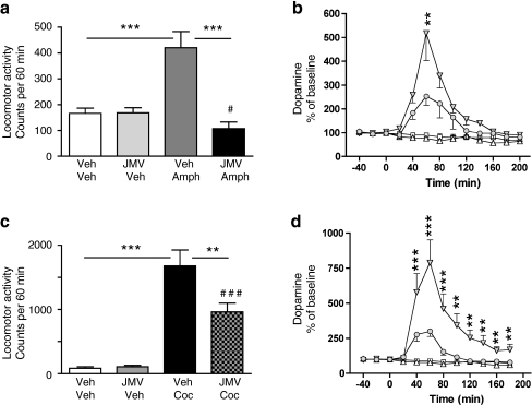 Suppressed ghrelin signaling by ghrelin receptor (GHS-R1A) antagonist (JMV2959) attenuates amphetamine, and cocaine-induced locomotor stimulation and accumbal dopamine release. a Amphetamine-induced locomotor stimulation was attenuated by a single i.p. injection of JMV2959, but not by vehicle injection in mice (n = 8 in each group; ***P < 0.001, #P = n.s for Veh-Veh vs JMV-Amph). b The amphetamine-induced increase in accumbal dopamine release was absent in GHS-R1A antagonist (JMV2959, i.p.), but not in vehicle-treated mice (n = 8 in Veh-Veh (square), Veh-Amph (filled triangle), and JMV-Veh (triangle) groups and n = 9 in JMV-Amph (circle) group). This difference was evident at time interval 60 min (**P < 0.01, Bonferroni post-hoc test). Even though JMV2959 does not completely block the amphetamine-induced accumbal dopamine release, this increase fails to reach statistical significance compared to vehicle treatment. c Cocaine-induced locomotor stimulation was attenuated by a single i.p. injection of JMV2959, but not by vehicle injection in mice (n = 8 in each group). (**P < 0.01, ***P < 0.001, ###P < 0.001 for Veh-Veh vs JMV-Coc). d The cocaine-induced increase in accumbal dopamine release was absent in GHS-R1A antagonist (JMV2959, i.p.), but not in vehicle-treated mice (n = 8 in Veh-Veh (square) and JMV-Veh (triangle) groups, n = 9 in Veh-Coc (filled triangle) and n = 10 in JMV-Coc groups (circle). This difference was evident at time intervals 20–180 min (**P < 0.01, ***P < 0.001). Even though JMV2959 does not completely block the cocaine-induced accumbal dopamine release, this increase fails to reach statistical significance compared to vehicle treatment