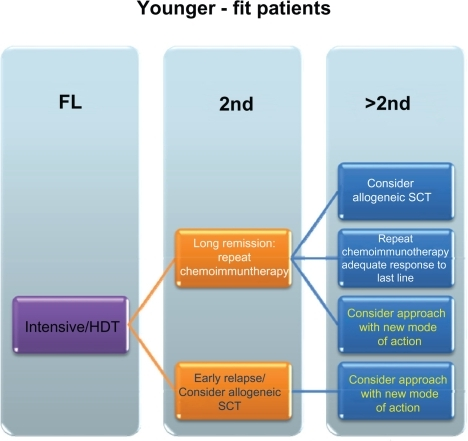 Schematic overview of potential treatment approaches – younger/fit patients.Abbreviations: FL, first line; HDT, high dose therapy; SCT, stem cell transplantation; 2nd, second line treatment; >2nd, higher than second line treatments.