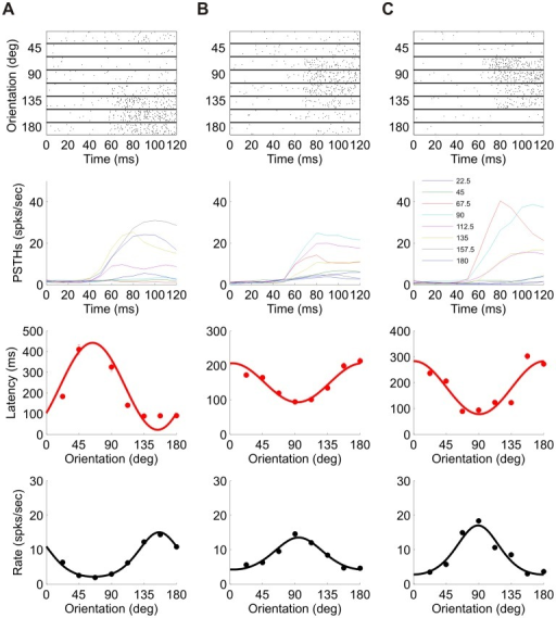 Additional examples of spike latency tuning.Each column, (A)–(C), corresponds to data from a different unit. First row: Raster plot for each of the 8 orientations. For each orientation, 100 randomly chosen trials are shown for 120 ms after stimulus onset. Second row: PSTH (Post Stimulus Time Histogram) for the same time window. Third row: Tuning curve of first spike latency. Cosine fit is shown as a solid line. Fourth row: Rate tuning curve (black circles) and a fitted von-Mises function (solid line). The cell in (A) is taken from dataset 1 in Table 1, in which stimulus duration was 400 ms and the number of trials was 400. The cells in (B) and (C) are taken from dataset 5 in Table 1, in which stimulus duration was 300 ms and the number of trials was 300. These are the same 3 cells as in Figure 5.