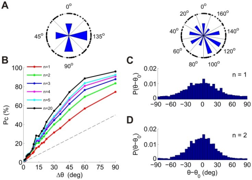 Discrimination among multiple alternatives using the n-tWTA in populations of neurons.(A) The tuned neurons in one of the datasets (dataset 3 in Table 1) were divided according to their preferred orientations into M groups of equal orientation width, Δθ = 180°/M. To illustrate this division, each point on the circle represents a neuron (the angle is twice the preferred orientation). The left plot illustrates division into M = 4 groups of width Δθ = 45° and the right plot illustrates division into M = 9 groups of width Δθ = 20°. Each group is labeled by the orientation of its center. The lengths of the blue bars are proportional to the number of neurons in each group. (B) Probability of correct discrimination of the n-tWTA as a function of group width. The different curves correspond to n = 1,2,3,4,5 and 20. (C–D) Distribution of errors for group width of Δθ = 1° for n = 1 (C) and n = 2 (D).