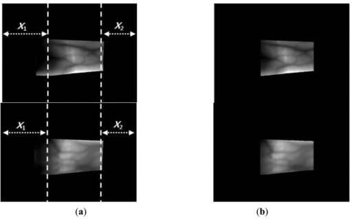 Examples of finger region detection using images from database I: (a) original images and (b) detection results for the finger boundaries.