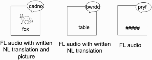 Example of the three types of word presentations during the incidental learning phase (letter-search task). FL = foreign language; NL = native language.