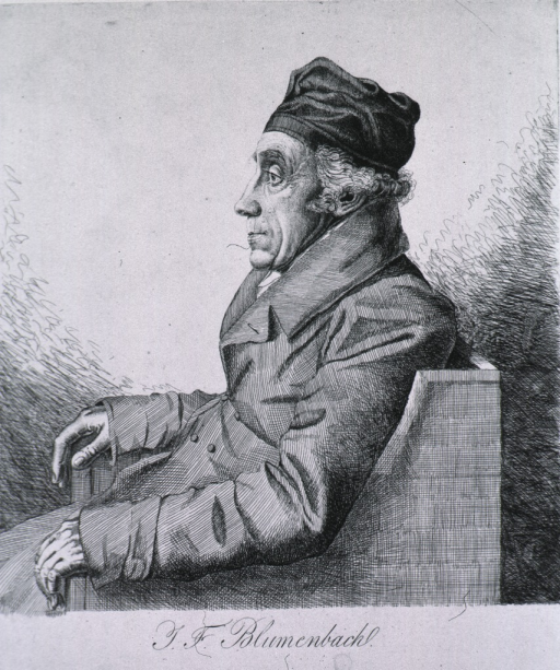 <p>Seated, hands on chair, left profile.</p>