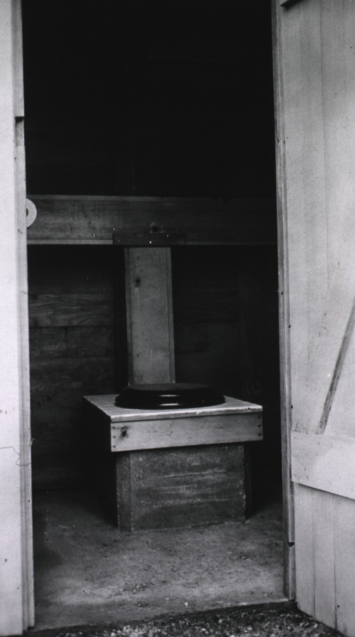 <p>Interior view of a privy showing the stool with 'fancy' seat cover; roll of toilet paper can be seen hanging on the wall to the left.</p>