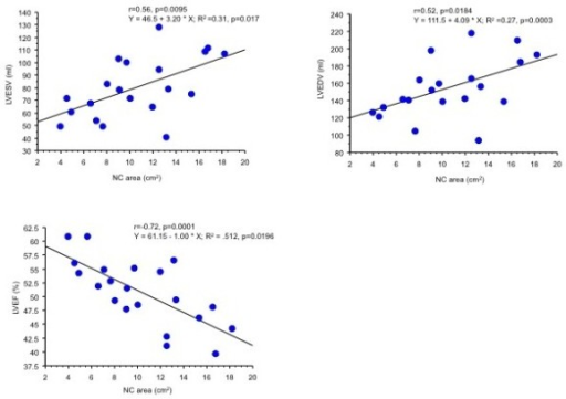 Scattergrams of non-compacted (NC) area against left ventricular end-diastolic (LVEDV) and end-systolic (LVESV) volumes, and left ventricular ejection fraction (LVEF) in patients with left ventricular ventricular non-compaction who did not present with dyspnoea.