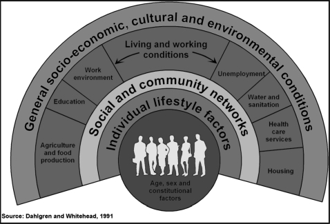 Dahlgren and Whitehead's model of the social determinants of health.