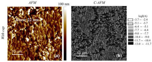 AFM images and C-AFM current map for samples annealed with a protective carbon capping layer. Surface morphology (a) and C-AFM current map (b) on a contact Ti/Al fabricated on the Al+-implanted 4H-SiC surface and annealed at 1700°C with a protective carbon capping layer.