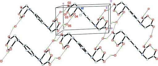 The packing of the crystal structure, showing the zigzag chains and a wave-like layer formed by O—H···O hydrogen bonds (dotted lines). H atoms not involved in the hydrogen bond interactions have been omitted for clarity.