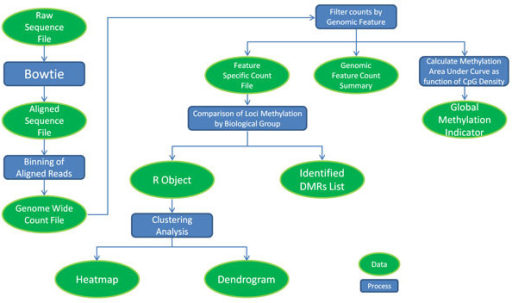 Diagram of global methylation analysis workflow arrows open i diagram of global methylation analysis workflow arrows indicate order of operation and break at decision ccuart Images