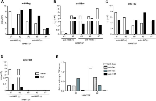 Detection of antibody responses against HTLV-1 in serum and CSF of HAM/TSP patients. The data were obtained from 5 HAM/TSP patients including 2 patients (#1 and #2) and 3 patients (#5, #6 and #7) with and without HBZ-specific antibody response, respectively. Antibody responses for Gag (A), Env (B), Tax (C) and HBZ (D) were examined in serum (opened bar) and in CSF (closed bar). (E) Ratio of immunoreactivities against HTLV-1 Gag, Env, Tax and HBZ in CSF to those in serum of two HAM/TSP patients with HBZ-specific antibody responses.