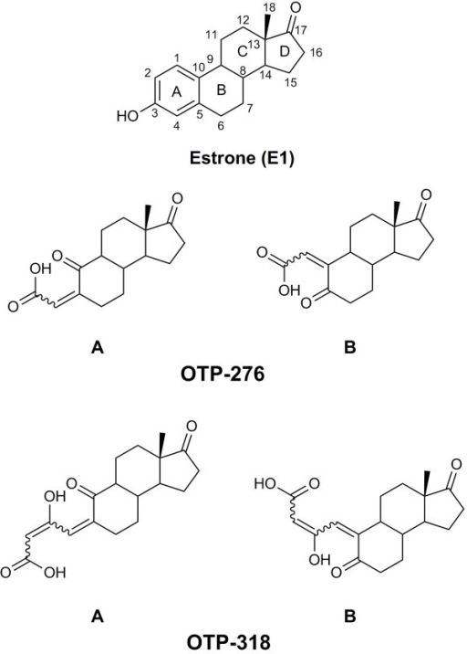 Molecular structure of estrone (E1) showing the standard C atom numbering and two possible structures for each of the identified OTPs. OTP-276B was not observed, while OTP-318B was 10 times less abundant than OTP-318A. Wavy bonds indicate that the exact stereochemistry is unknown.