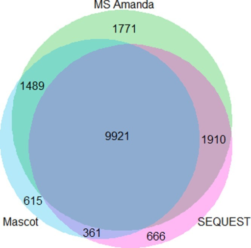 Overlap of target PSMs based on one HCD HeLa replicate.MS Amandaexplains large fractions of PSMs also identified by Mascot and SEQUEST.Further, our algorithm explains many peptides otherwise uniquely identifiedby either Mascot or SEQUEST.