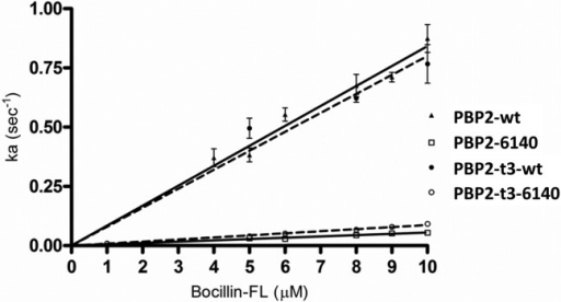 Second-order rates ofacylation of Bocillin-FL against full-lengthand truncated constructs of wild-type PBP2 and PBP2 from the penicillin-resistantstrain 6140. For each experiment, the pseudo-first-order rates ofacylation (ka) were plotted vs the concentrationof Bocillin-FL. Shown is the average plot of at least two or moreindependent experiments, where the slope of the line yields the second-order k2/Ks value.