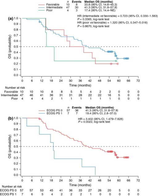 Kaplan–Meier estimates of overall survival by (a) MSKCC risk group and (b) baseline ECOG PS. CI, confidence interval; ECOG PS, Eastern Cooperative Oncology Group performance status; HR, hazard ratio; MSKCC, Memorial Sloan-Kettering Cancer Center; NE, not estimable; OS, overall survival.