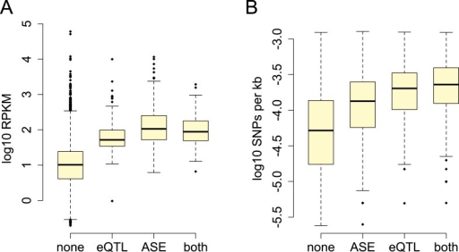 Power to detect ASE vs eQTL.(A) Detection of ASE is favored for genes with higherexpression levels (p = 3.99 × 10−209),(B) whereas detection of eQTL is favored for genes withgreater cis-regulatory SNP density (p = 1.05× 10−73).DOI:http://dx.doi.org/10.7554/eLife.04729.011