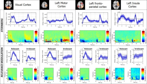 Entropic time-courses and time-frequency spectrograms are given for the visual, left motor, left fronto-parietal and left insula regions.The upper panel shows results for the Sternberg task and the lower panel shows results for the RM task. For entropic timecourses, the blue line shows change in entropy from baseline level; the shaded region shows standard error across subjects. Time-frequency spectrograms show deviation from resting state oscillatory amplitude, with red and blue showing increased and decreased oscillatory amplitude respectively. Note that both tasks elicit transient changes in signal entropy. Note also the differences in temporal profile of entropy across brain regions.