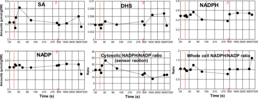 Intracellular SA, DHS, NADPH, NADP amounts, cytosolic and whole cell NADPH/NADP ratio during the pulse experiments.Data points before t = 0 represent the state 5 mins after the SA addition, just before the glucose perturbation.