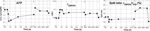 Model based estimation of the intracellular flux of G6PDH and the split ratio of flux into PPP and glycolysis during the pulse experiments.Data points before t = 0 represent the state 5 mins after the SA addition, just before the glucose perturbation.