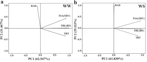 Principal component analysis of four traits under WW (a) and WS (b) condition. TRL: total root length; TSA: total root surface area; RAD: root average diameter; TRT: total root tips; TRV: total root volume; RF: root forks. WW: well-watered condition; WS: water-stressed condition.