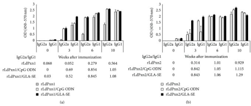 Anti-LdPxn1 and -LdPxn2 antibodies in immunized mice. Mice were immunized subcutaneously with recombinant LdPxn1 or LdPxn2 proteins with or without CpG ODN or GLA-SE. Mice were boosted twice in 3-week intervals. The levels of IgG1 and IgG2a isotypes were measured on sera collected at different time points using ELISA. Data are presented as the mean OD ± S.E.M. of IgG1 and IgG2a of sera from mice immunized with rLdPxn1 (a) and rLdPxn2 (b). The IgG2a/IgG1 ratios are shown in tables below each figure.
