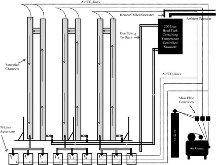 Schematic of flow‐through seawater ocean acidification experimental system for conducting CO2 exposure studies with marine fish.