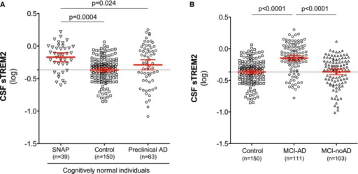 CSF sTREM2 levels in cognitively normal SNAPs and in MCI‐noADScatter plot showing CSF sTREM2 levels across different groups of cognitively normal individuals: SNAP, suspected non‐AD pathophysiology (n = 39); control subjects (n = 150); and preclinical AD (n = 63).Differences in CSF sTREM2 in MCI‐AD (n = 111) compared to MCI‐noAD (n = 103) and controls (n = 150).Data information: The red bars represent the mean and the 95% CI. P‐values were assessed by a linear mixed‐effects model adjusting by age and gender (fixed effects) and center (random effect).