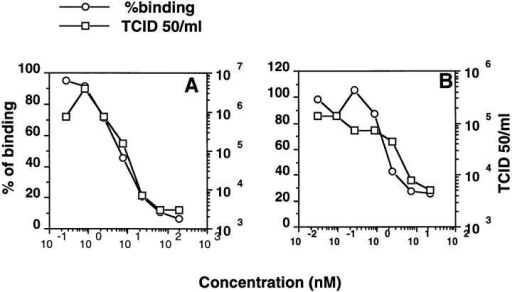 Inhibition of HIV–cell binding by sCD4. HIV Hx10 (A) or  MN (B) virus was preincubated with increasing concentrations of sCD4  for 2 h at 37°C before addition of the A3.01 cells. The virus binding test  was carried out as described for Fig. 1, and data are represented as percentage of binding. To measure virus infectivity, serial dilutions of a sample of the same sCD4-treated virus used for the binding test were incubated with A3.01 cells for 2 h at 37°C before culture for 10 d, and the  viral titer calculated at peak p24 production in the culture supernatant.  Neutralization is represented as reduction in infectivity (TCID50).