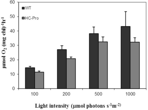 Light-responsive O2-evolution of photosystem II was measured of wild type (WT) and HC-Pro expressing plants. O2-evolution was measured of freshly isolated thylakoid membranes using DCBQ as an electron acceptor. Standard error of mean is presented as bars abobe the columns (n = 6, consisting of three biological and two technical replicates).