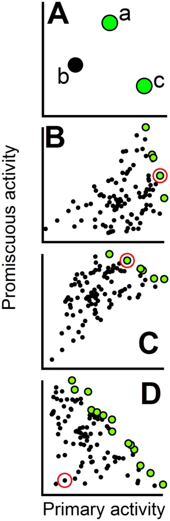 "Use of the Pareto set to define the patterns of primary/promiscuous activity modulation.In all plots, each data point represents the primary and promiscuous activity data for a given protein variant. Different variants may be thought as corresponding to different combinations of mutations from a given set. (A) Illustration of Pareto set construction. Variant ""b"" is dominated by variant ""a"", since the latter shows higher values of both activities. Variant ""a"" is not dominated by variant ""c"", since promiscuous-activity(a)>promiscuous-activity(c). Variant ""c"" has the highest value for the primary activity and is not dominated neither by ""a"" nor ""b"". The non-dominated variants ""a"" and ""c"" form the Pareto set (green data points) for this three-variant example. (B), (C) and (D) are illustrative examples of the relation between the Pareto set (green data points) and the primary/promiscuous trade-offs. In (B) and (C) the starting variant (marked with a red circle) belongs to the Pareto set and, therefore, increasing the promiscuous activity necessarily implies a decrease of the primary activity. The plot in (B) is meant to illustrate a weak trade-off along the Pareto set (a significant increase in promiscuous activity can be achieved with only a small decrease in primary activity) while (C) is meant to illustrate a strong trade-off. In (D) the starting variant does not belong to the Pareto set and, hence, the simultaneous enhancement of both activities is possible."