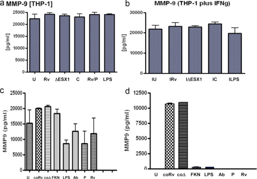 MMP-9 is produced by human macrophages at 24 h post-infection, but is not ESX1-mediated. Cells were infected at an M.O.I. of 10:1 or exposed to conditioned medium for 24 h. U = uninfected, Rv = Mtb H37Rv, ΔESX1 = Mtb ESX1 mutant, C = complemented ESX1 mutant, P = Mtb plus piceatannol, Ab = Mtb plus anti-fractalkine antibody, coRv = conditioned medium from Rv infected cells, coΔ = conditioned medium from ESX-1 infected cells, LPS = 1 ng/ml a) THP-1 cells, b) THP-1 cells plus overnight 10 U IFN-γ, c)MDMs, d) A549 alveolar epithelial cells. Data is representative of two replicates and 2 independent experiments and shows standard error bars.