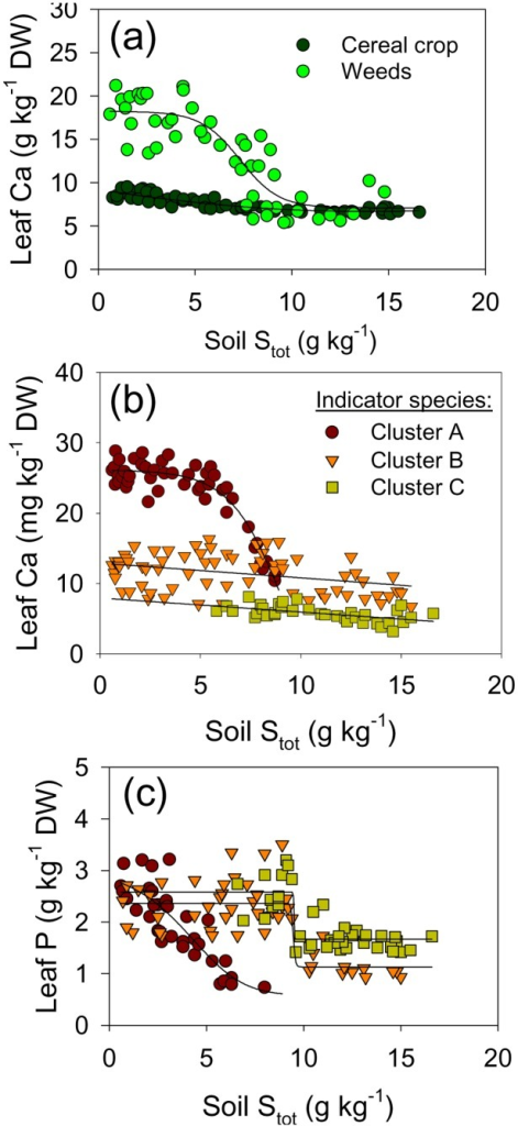 Trends in leaf concentrations of Ca and P along the pollution-induced soil gradient.Average Ca concentrations in weed vegetation and cereal crop (a); average Ca (b) and average P (c) in the three major ecological groups of species along the induced soil gradient. Species groups are defined by Indicator Species Analysis (see Figure 2). Average group elemental concentrations were calculated by weighting concentrations in each species by the relative proportion of a species in group biomass per m2. Leaves were sampled when crop was at milky ripeness phase (Z71–75).