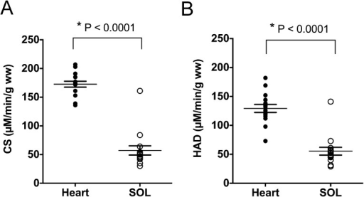 Mitochondrial enzymatic activities. (A) Citrate synthase (CS) activity. (B)3-hydroxyl-CoA-dehydrogenase (HAD) activity. Closed circles indicate the leftventricle (Heart), and open circles indicate the soleus muscle (SOL). The transversebars indicate means ± SEM (n=15).