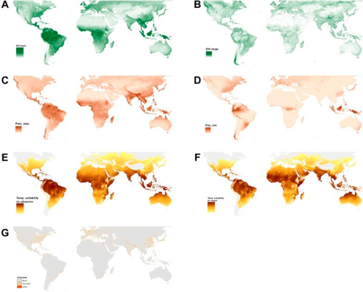 Set of covariate layers used to predict the ecological niche of Ae. aegypti and Ae. albopictus described in detail in the 'Materials and methods' section; (A) enhanced vegetation index (EVI) annual mean, (B) EVI annual range, (C) annual monthly maximum precipitation, (D) annual monthly minimum precipitation, (E) temperature suitability for Ae. albopictus, (F) temperature suitability for Ae. aegypti, (G) rural, peri-urban and urban classification layer.DOI:http://dx.doi.org/10.7554/eLife.08347.006