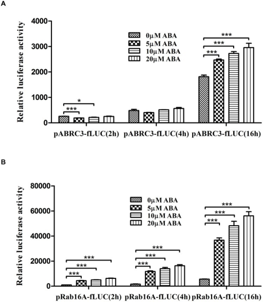 Rab16A promoter responds rapidly and significantly to ABA in rice protoplasts. Dual luciferase assay driven by ABA-responsive promoters. (A) pABRC3-fLUC reporter. (B) pRab16A-fLUC reporter. The mean value of relative luciferase activity for three independent experiments is shown, and error bars indicate SD; analysis of variance (ANOVA) with Tukey's test, ∗P < 0.05, ∗∗∗P < 0.001.
