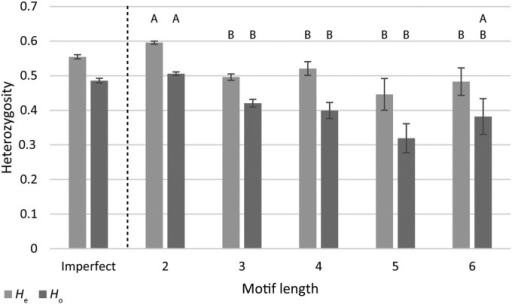 Comparison of expected and observed levels of heterozygosity across different motif lengths. Letters above each category depict significantly different groupings for either Ho or He, according to DSCF posthoc comparisons. Groupings indicate that dinucleotide repeats (2) are significantly greater than all other motif lengths in He, with the exception of hexanucleotide repeats (6) for Ho. Imperfect motifs are included for side-by-side comparison but were not included in statistical analysis. Error bars represent the standard error of each mean.