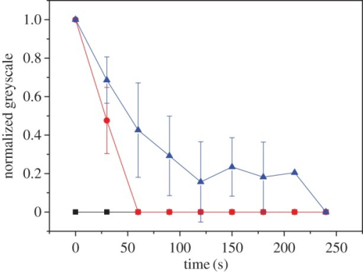 Relaxation of BslA films as a function of equilibration time: 2 min (black squares); 5 min (red circles); 10 min (blue triangles). Films were produced in a pendant drop from a 0.03 mg ml−1 solution of BslA. Wrinkles were monitored and the average lifetimes of six wrinkles are reported (error bars are standard deviation).