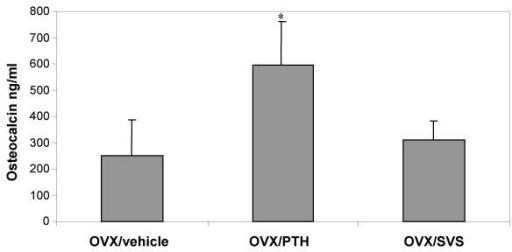 Mean Serum Osteocalcin levels at 13 weeks. While PTH treatment (596 ± 138 ng/ml) was significantly different (P < 0.001,*) from OVX (252 ± 57 ng/ml) and SVS (309 ± 74 ng/ml), SVS treatment was not significantly different (NS) from OVX vehicle treated animals after 13 weeks.