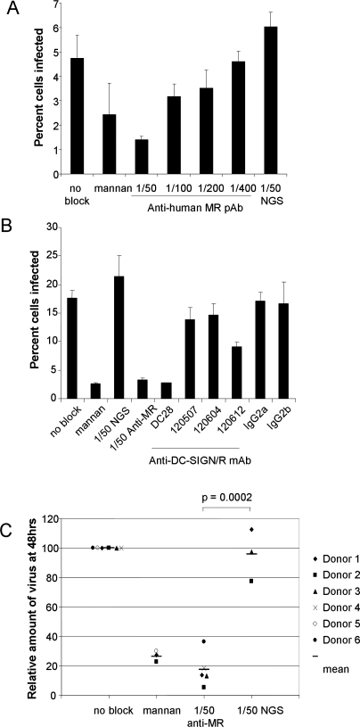 Anti-MR and Anti-DC-SIGN Antibodies Inhibit the Ability of DV2 to Infect IL-4-Treated Monocytes(A) IL-4-treated human monocytes were incubated in triplicate wells with medium alone (no block), 2mg/ml mannan, titrations of goat anti-human MR antiserum, or with normal goat serum (NGS). Treated cells were infected with mosquito cell–grown 16681 DV2 at a multiplicity of infection of 0.5 in the presence of these inhibitors, incubated for 48 h and fixed.(B) Monocytes were treated in triplicate wells, as above, including blocking with monoclonal antibodies specific for DC-SIGN (120507), DC-SIGNR (120604), and both DC-SIGN and DC-SIGNR (DC28 and 120612) or isotype controls (all at 5ug/ml) prior to infection with mosquito cell–grown 16681 DV2 at a multiplicity of infection of 0.04 in the presence of these inhibitors. Following fixation, cells were immunolabelled with anti-DV E protein monoclonal antibody 3H5 and counted using a fluorescent microscope, and percent of cells infected calculated. Data are expressed as mean and SD of triplicate wells. Representative data from one of multiple donors are shown.(C) The titre of infectious virus in the cell supernatant at 48 h post infection was determined by plaque assay. Due to variation between donors, the titre at 48 h in the absence of block was normalised to 100. Each data point is the average of three infected wells, each plaqued in triplicate, and the results from six donors are shown in this graph (mean represented by a bar). The p value was calculated by unpaired, two-tailed t test.