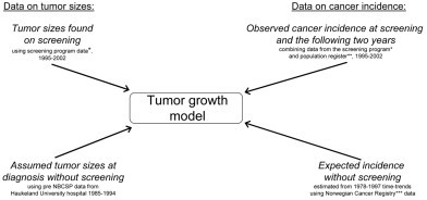 Data sources used in the estimation. *Norwegian Breast Cancer Screening Program (NBCSP). **Statistics Norway (SSB). ***Norwegian Cancer Registry.