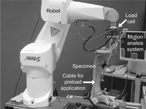 Setting with robot, specimen, and motion analysis system. Specimen mounted to the robot and footplate and equipped with ultrasound transducers.