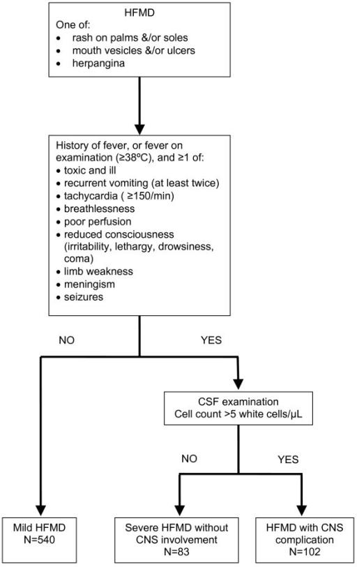 Nervous System Flow Chart Ibovnathandedecker