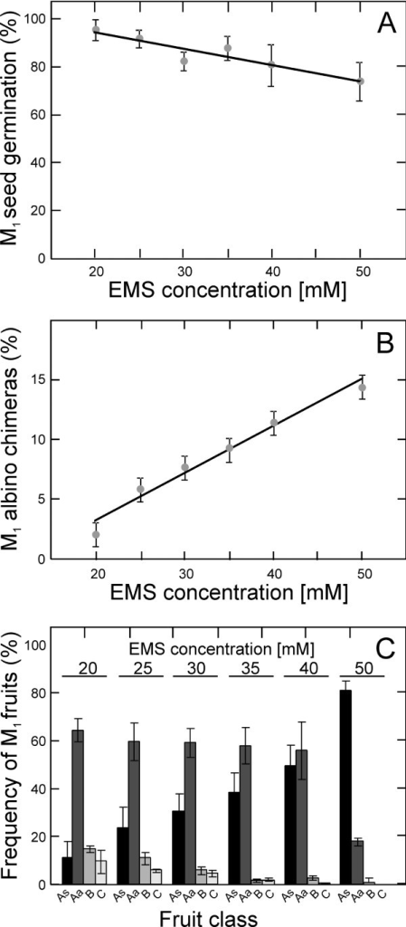 Dose effects of EMS mutagenesis in A. thaliana M1 Ler plants. A) Frequency of M1 seed germination. B) Frequency of M1 albino chimeras at vegetative stage. C) Frequency of sterility, embryo lethality and fertility measured as the percentage of different fruit classes. Fruits of M1 plants are classified as As, Aa, B and C (from fully sterile to nearly normal fertility) depending on the proportion of aborted seeds (see Methods for details). Data are mean ± SE of three to six replicates. Untreated control plants showed 100% germination, 0% albino chimeras and 0, 3 and 97% of A, B and C fruit classes.